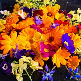 Eve's Leaves Irish Edible Flowers